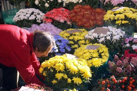 la guerra dei fiori pra la guerra dei fiori per il ponte di ognissanti