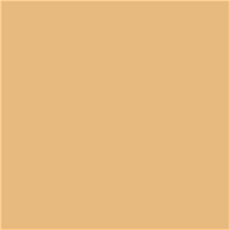 roblox skin color roblox skin tone roblox