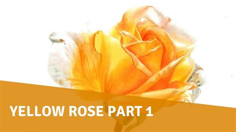 watercolor tutorial part 1 watercolor tutorial yellow rose part 1 youtube