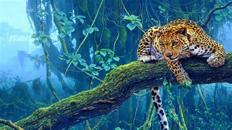 imagenes en hd para pc 1920x1080 tiger wallpaper full hd wallpapersafari