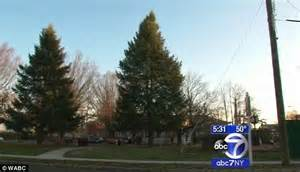 christmas trees jersey city new jersey councilwoman quits calling tree a tree daily mail