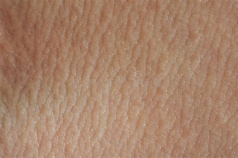macro of clean healthy texture human skin stock photo 497410486 human skin texture stock image image of backdrop 79842953