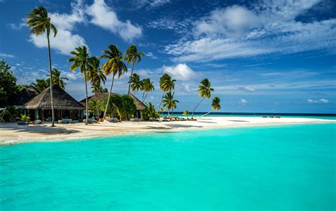 wallpaper landscape sea bay sky beach coast palm