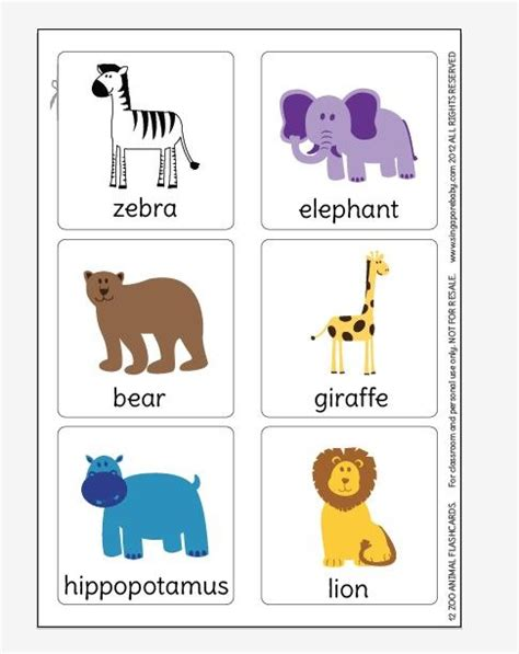 printable animal cards free 5 best images of printable zoo animals flash cards zoo