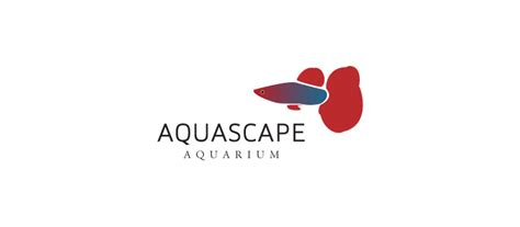 aquascape aquarium logobird logo and brand identity design