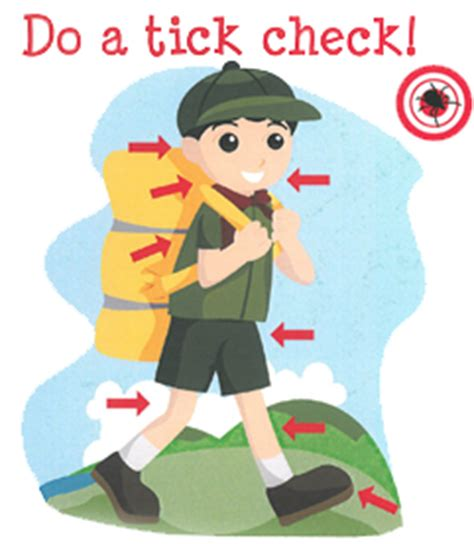 how to check for ticks ticks and lyme disease facts crca