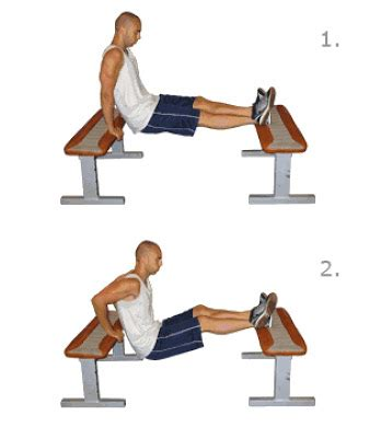 dips between benches step exercises and fitness arm exercises step 1 bench