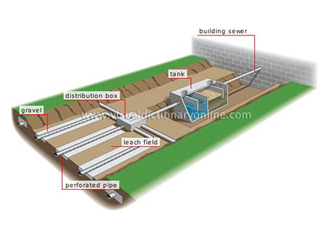 septic tank filter location septic get free image about