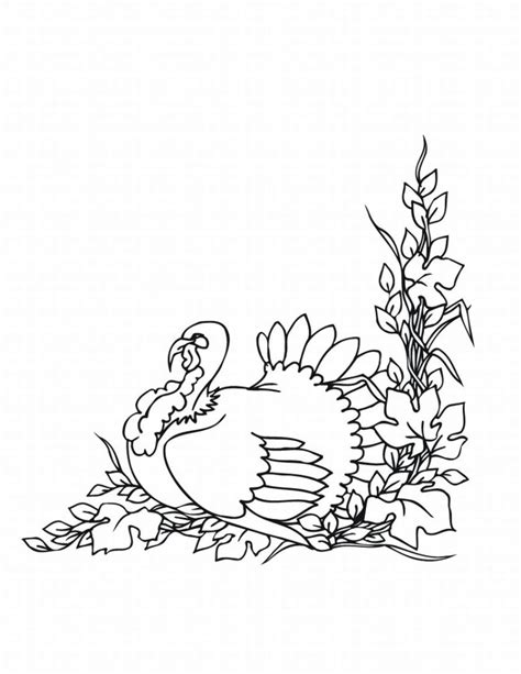 coloring pictures of turkeys free free printable turkey coloring pages for kids