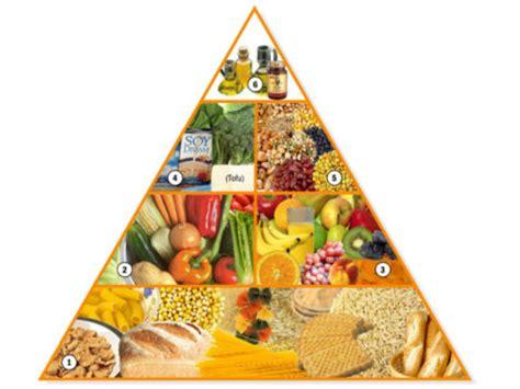 piramide alimentare vegana pir 225 mide de nutrici 243 n vegana nutrici 243 n vegana y