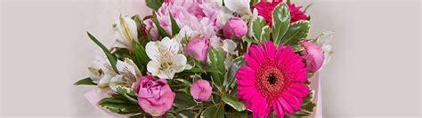 fiore per chiedere scusa fiori per chiedere scusa consegna a domicilio floraqueen