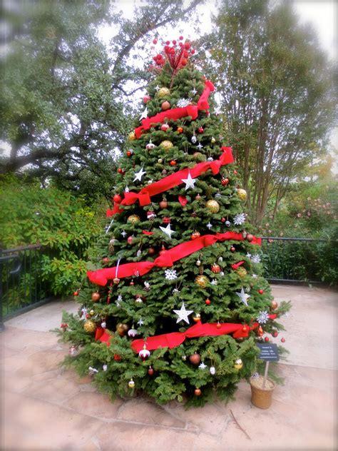 krismas tree to botni name gallery holidays in bloom at the san antonio botanical garden san antonio charter