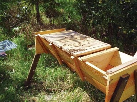 beekeeping top bar hive 1545 best bee keeping images on pinterest