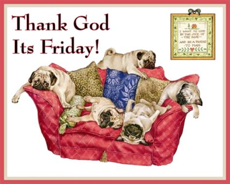 its friday images thank god its friday pictures photos and images for