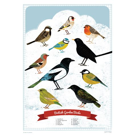 printable bird poster save birds poster images