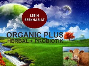 Vitamin Ayam Petelur Herbal nutrisi vitamin ternak organik ji stresa ayam unggas