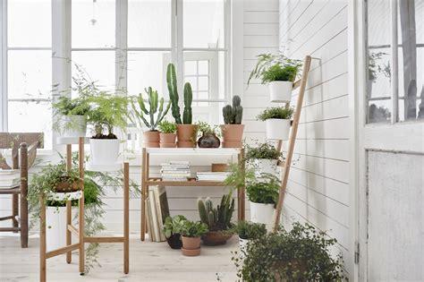 indoor gardening ideas beautiful indoor garden ideas