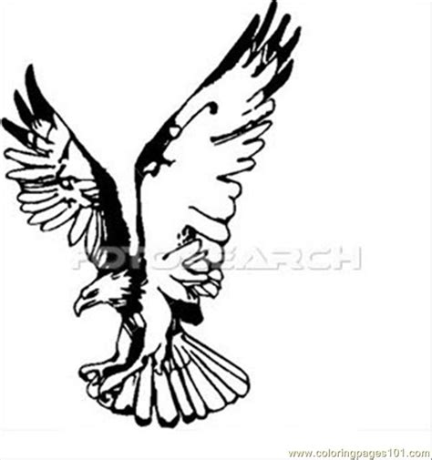 eagle wings coloring page eagle wings up coloring page free eagle coloring pages