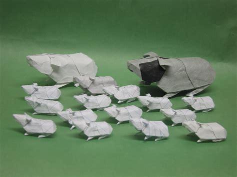 Origami Guinea Pig - paper origami guinea pigs guinea pig x wallpaper www