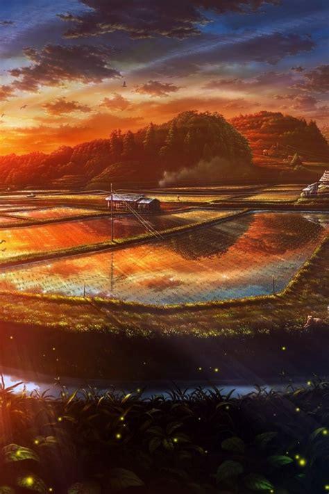 sunset anime scenery drawn iphone  wallpaper