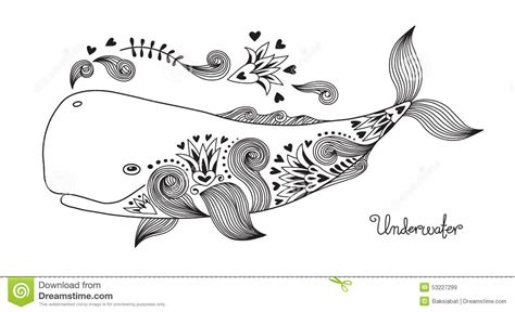 banche immagini free happy whale stock vector image 53227299