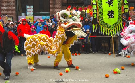 new year celebration boston 2018 boston new year parade 2018 boston s chinatown