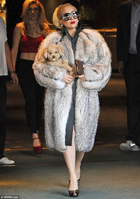 real or how do you wear your fur gaga steps out in bulgaria wearing a large fur coat