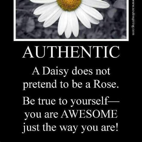 Cute Daisy Quotes. QuotesGram   Daisy Pics   Daisy quotes