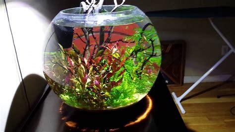 Aquascape Filters 15 Gal Fish Bowl Youtube