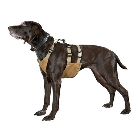 Protector For Dogs by Filson Chest Protector