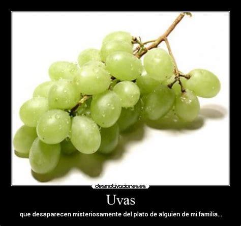 Imagenes Graciosas Uvas   uvas desmotivaciones