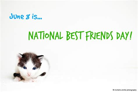 10 Reasons Why Cats Are A Best Friend by 10 Reasons Why Pets Make Purrfect Best Friends Karma Cat