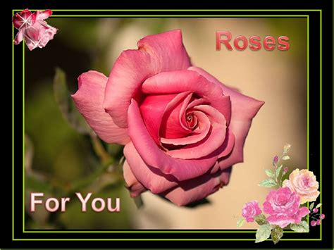 Is For You by Roses For You