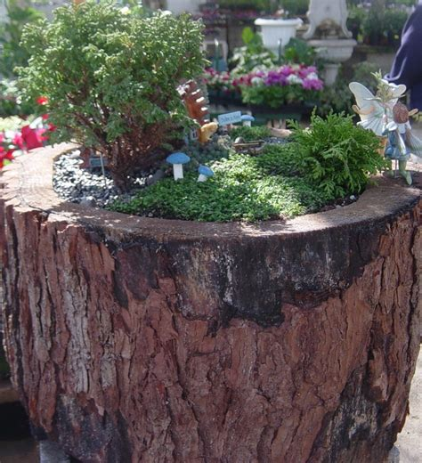 1000 images about stump planters on