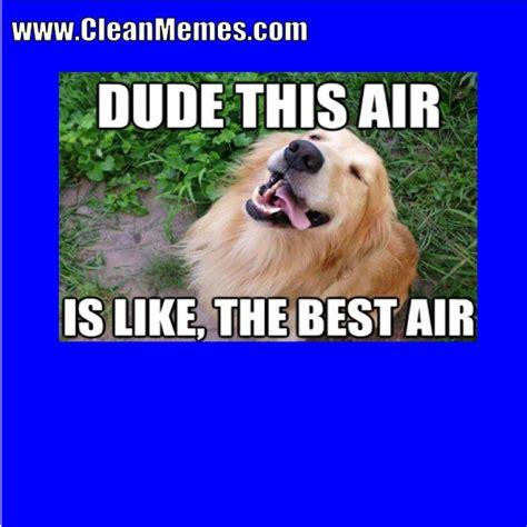 Doge Meme Best - best doge memes doge meme original picture 28 images best