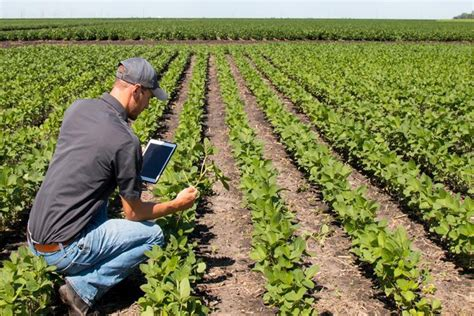 Mba In Agribusiness Management In Australia by Agriculture Courses Au