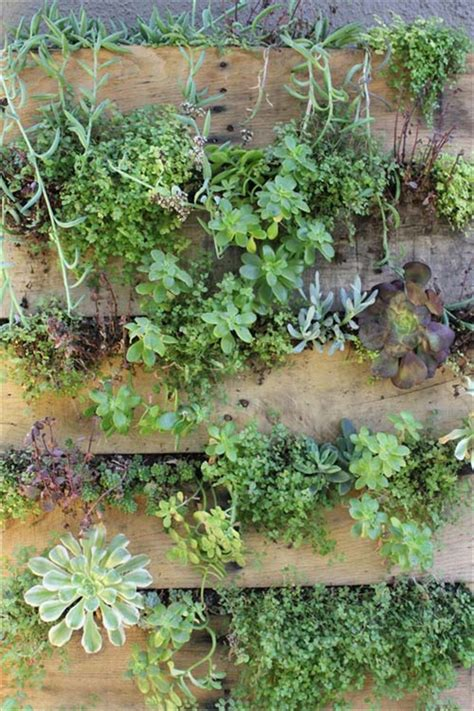 Diy Pallet Vertical Garden Diy Pallet Garden Give Sense Of Freshness Indoor Pallet