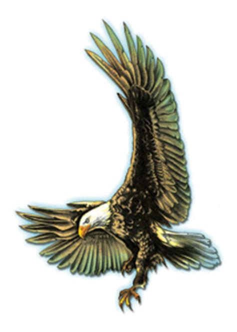 bullseye eagle entfernbare tattoos