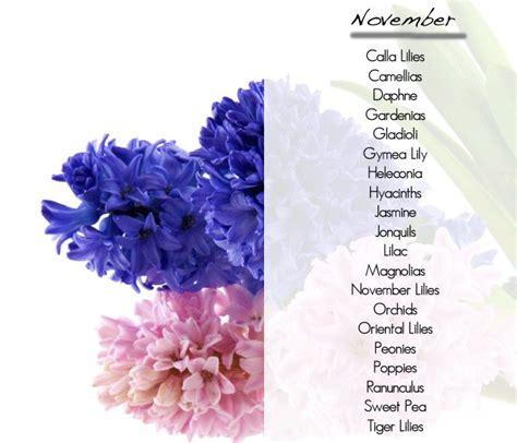 flowers in november 25 best ideas about november wedding flowers on pinterest