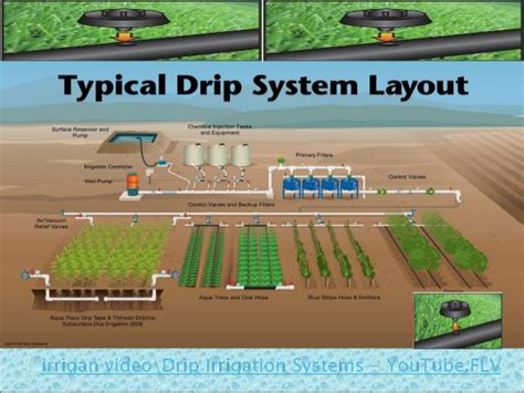 Micro Irrigation For Enhancing Water Productivity In Field How To Set Up Drip Irrigation System For Vegetable Garden