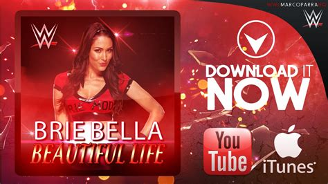 theme song you are beautiful wwe single beautiful life brie bella new theme song