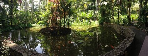 Hawaiian Botanical Gardens Hawaii Tropical Botanical Garden
