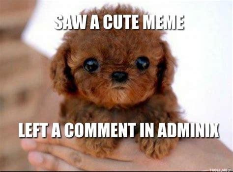 Cute Puppies Meme - cute puppy memes memes