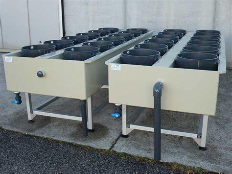 vasche per acquacoltura vasche e incubazione vasche in polipropilene