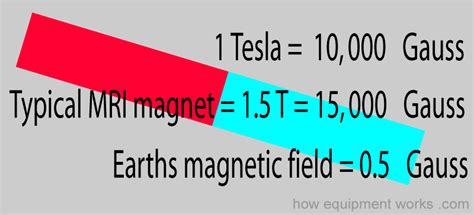 Earth Magnetic Field Strength Tesla How Magnetic Resonance Imaging Works Explained Simply