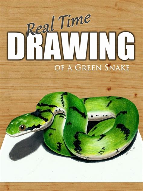 Time To Be A Real Snake by Real Time Drawing Of A Green Snake On Prime