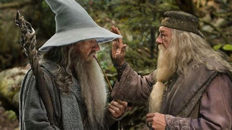 actor gandalf and dumbledore gandalf and dumbledore will marry across the street from