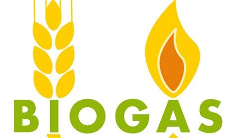 Home Decor Affordable by Biogas Appears Promising