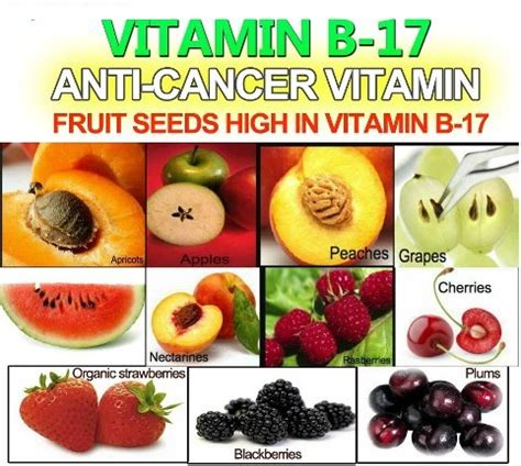 Vitamin B17 Anticancer Vitamin B17 Health Info