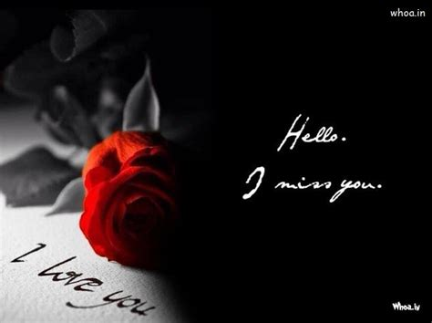 love       red ross hd wallpaper